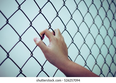 Handle on the background of metal mesh fence