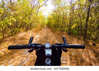 Handlebar of a bicycle in autumn forest. View from bikers eyes