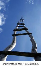 A handmade birchwood ladder leads to the sky