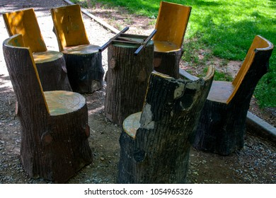 Handmade Chairs Carved From Stumps In The Garden