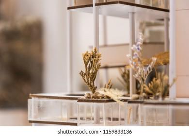 Handmade dried flowers