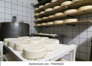 handmade italian cheese production in mountain farm