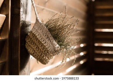 handmade knitted flower pot with velesk home plant (Calluna) on wooden wall of rustik house