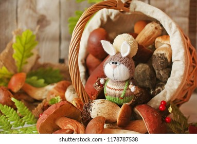 Handmade knitted toy. A knitted bunny in green trousers and hat with pompom among white forest cep mushrooms which have fallen out of the basket. Autumn harvest