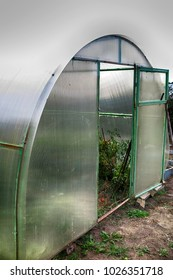 Handmade polycarbonate greenhouse in the summer garden