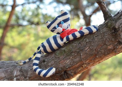 Handmade toy cat wearing red scarf is resting on a pine stem
