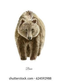 Handpainted watercolor poster with bear isolated on white background