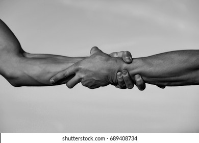 hands or arms of men, muscular, with biceps, triceps handshake or wrestling outdoor on natural background, black and white