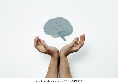 Hands arranged in a gesture of support. Two hands stacked side by side include the brain. Medical concept, brain tumor. Help others, support in brain problems, alzhaimer.