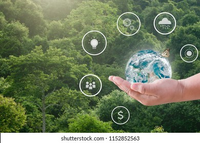 The hands of a child are holding a globe and have digital icons on the benefits of planting trees against a natural green background,  Elements of this image furnished by NASA.
