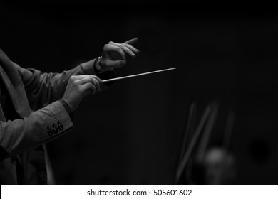 Hands of conductor in black and white