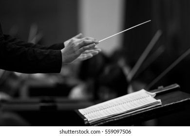 Hands of conductor closeup in black and white