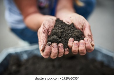 Hands dirty with clay, soil background.