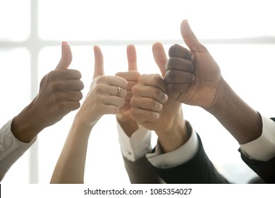 Hands of diverse business team people showing thumbs up like finger gesture as concept of recommendation or good job choice, celebrate great deal, racial equality, successful teamwork, close up view