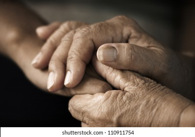Hands of an elderly woman holding the hand of a younger woman. Lots of texture and character in the old ladies hands.
