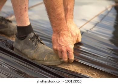 Hands of a farmer fixing a black plastic roll.