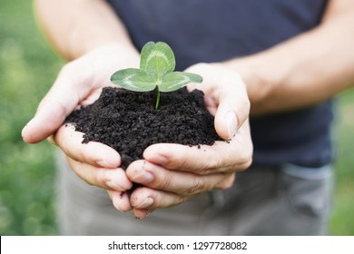 Hands of farmer growing and nurturing tree growing on fertile soil with green bokeh background, nurturing plant, protect nature. Close up.