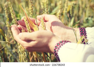 Hands of a farmer in ukrainian traditional shirt waiting for good harvest