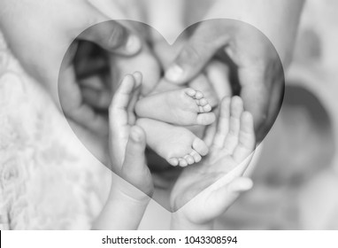 The hands of father, mother, sister holding little child's legs. Heart-shaped background (double exposure, black and white photo)