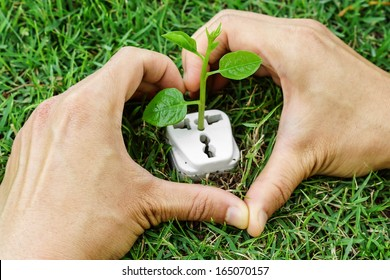 hands forming a heart shape around a tree growing on a socket / green energy / clean energy