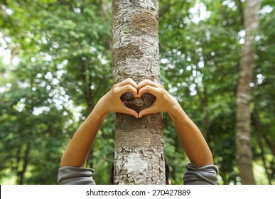 hands forming a heart shape around a big tree - protecting tree and love nature
