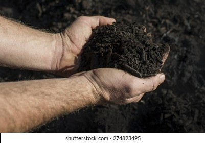 Hands full of organic compost.