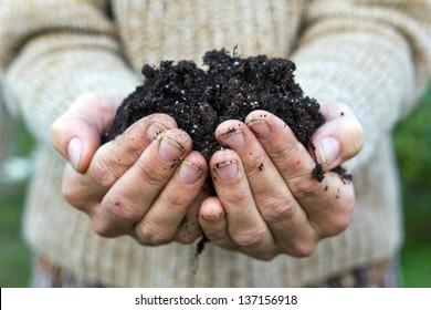Hände mit Gartenboden/Gartenboden
