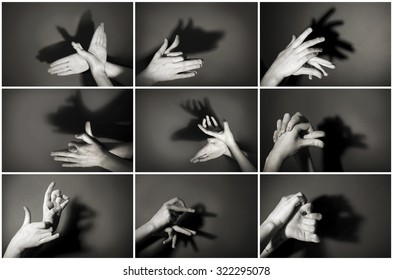 Hands gesture like different  animals and figures on gray background