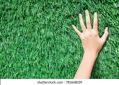 The hands of a girl put and touching with artificial grass.Sensory of hand learning to grow. Artificial turf background.