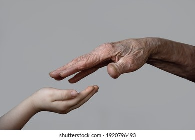 hands of grandmothers and granddaughters touching generations