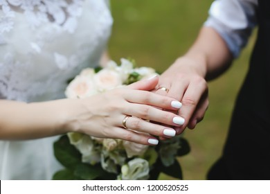 Hands of groom and bride with rings.  wedding details