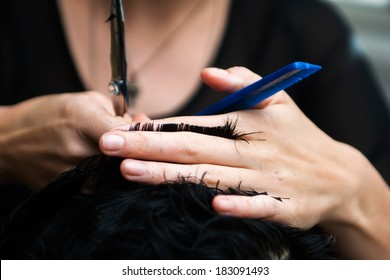 Hands of a hair stylist trimming hair with a comb and scissors