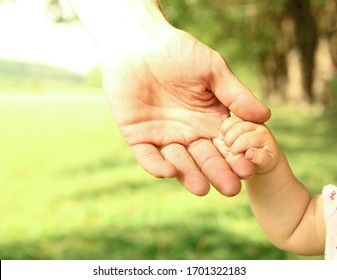 hands of a happy parent and child in nature
