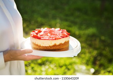 hands hold a plate with cheesecake against the background of a green grass