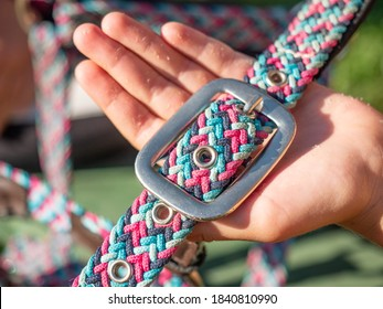 Hands hold strip of horse bridle, part of classic halter. Seting horse riding wearing.