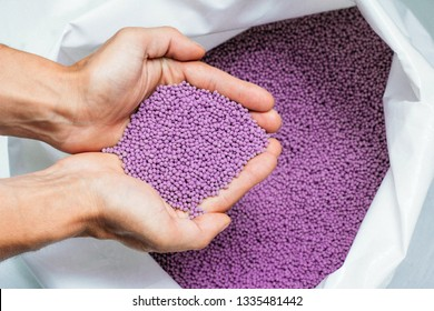 A hands hold or touching biodegradable plastic pellets recycling, plastic polymer dye granules color clear purple.