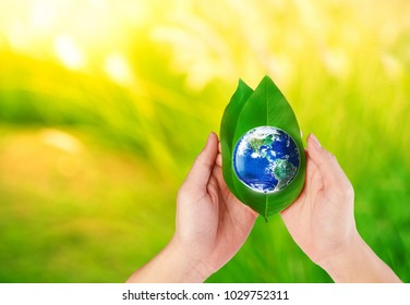 Hands holding Earth and green leaf with nature blurred background, Elements of this image furnished by NASA