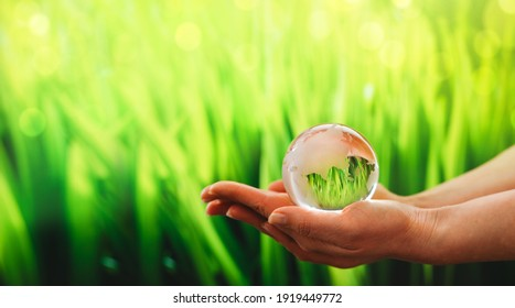 Hands  holding glass green planet. Save Earth. Concept of the Environment World Earth Day