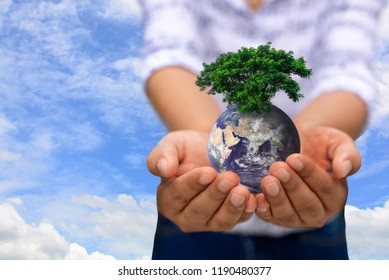 Hands holding a glowing earth globe and tree in his hand,copy space,eco concept,Elements of this image furnished by NASA.