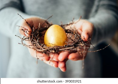 Hands holding golden egg in a small nest. Selective focus