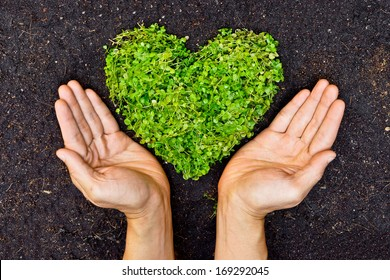 Hands holding green heart shaped tree  / Love nature and save the world / Heal the world / Environmental preservation