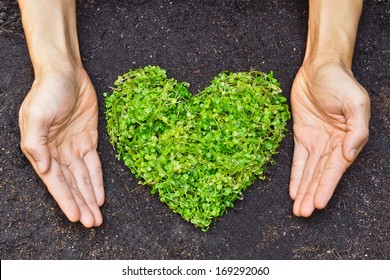 hands holding green heart shaped tree / green baby plant arranged in a heart shape / love nature / save the world / heal the world / environmental preservation