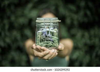 hands holding a jar with lavender inside