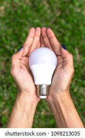 Hands holding a LED bulb on green grass background ,Eco friendly light bulb concept