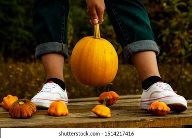 Hands holding a little pumpkin
