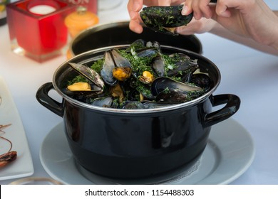 Hands holding a mussel with a large steaming pot with steamed mussels, fresh herbs and vegetables. Mussels are highly popular seafood menu in Belgium. Belgian style.