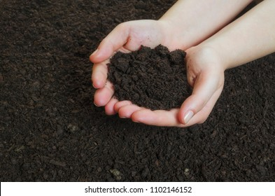 Hands holding a pile of soil above the ground