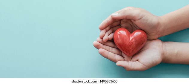 hands holding red heart, health care, love, organ donation, mindfulness, wellbeing, family insurance and CSR concept, world heart day, world health day, National Organ Donor Day, praying concept