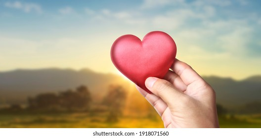 Hands holding a red heart. heart health donation concepts