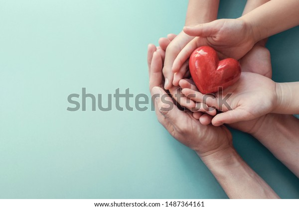 hands holding red heart, heart health, donation, happy volunteer charity, CSR social responsibility,world heart day, world health day,world mental health day,foster home concept